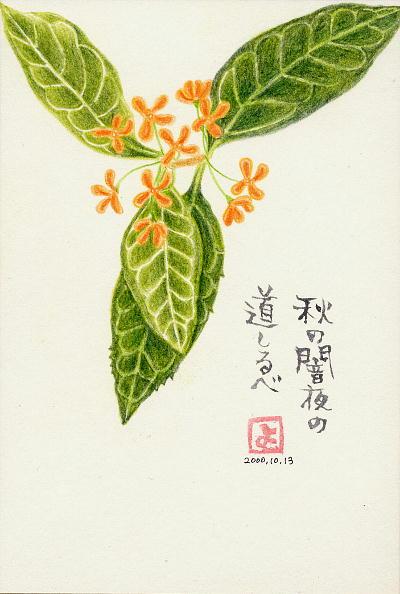 カ篶レコヤ、ホイヨ